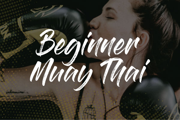 Beginner Muay-Thai / Kickboxing